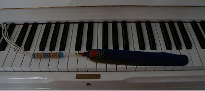 Shamaanisulka soittaa pianoa