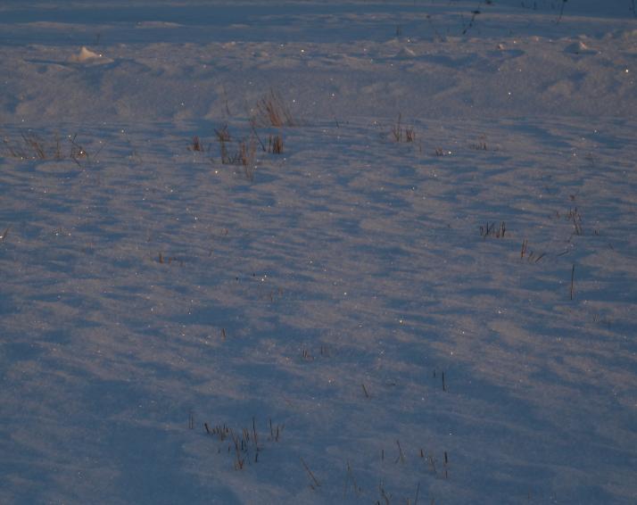 Kimallusta lumessa illan suussa.