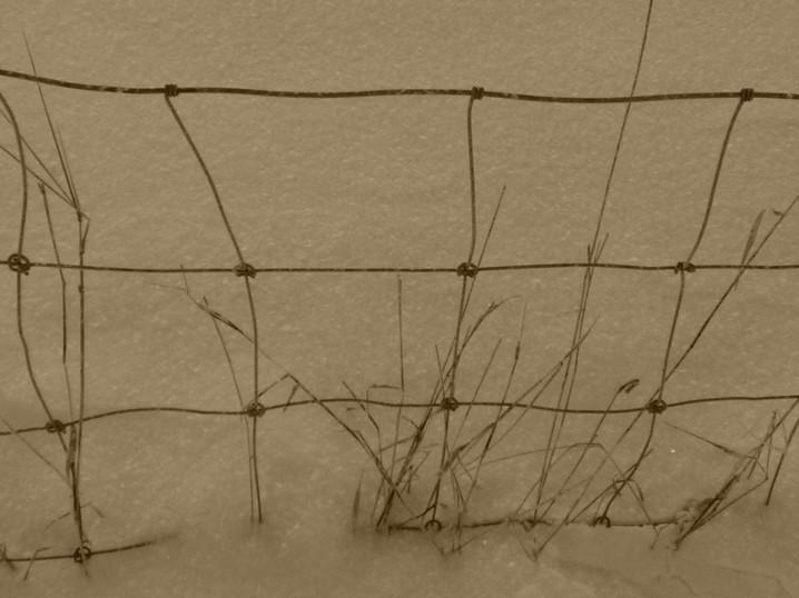Rautalanka-aita lumessa.