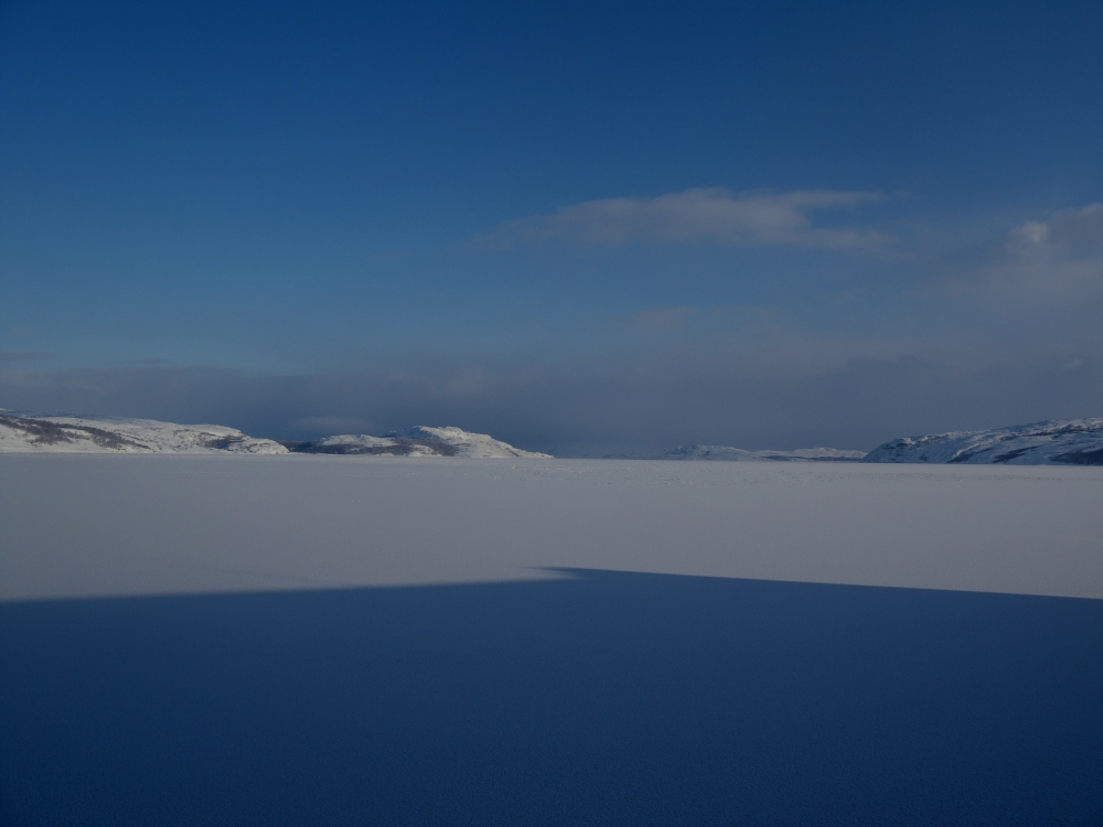 Barentsin meri, Vrangin vuono.