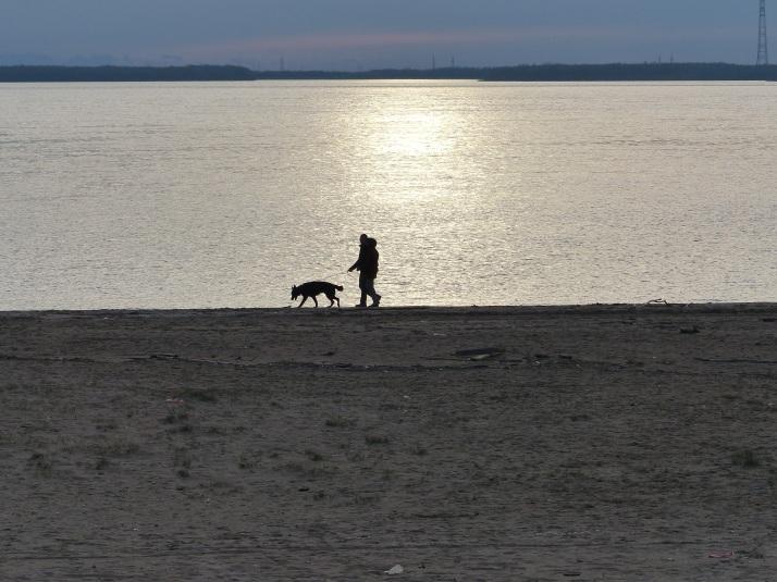 Koira, isäntä ja emäntä rannalla.