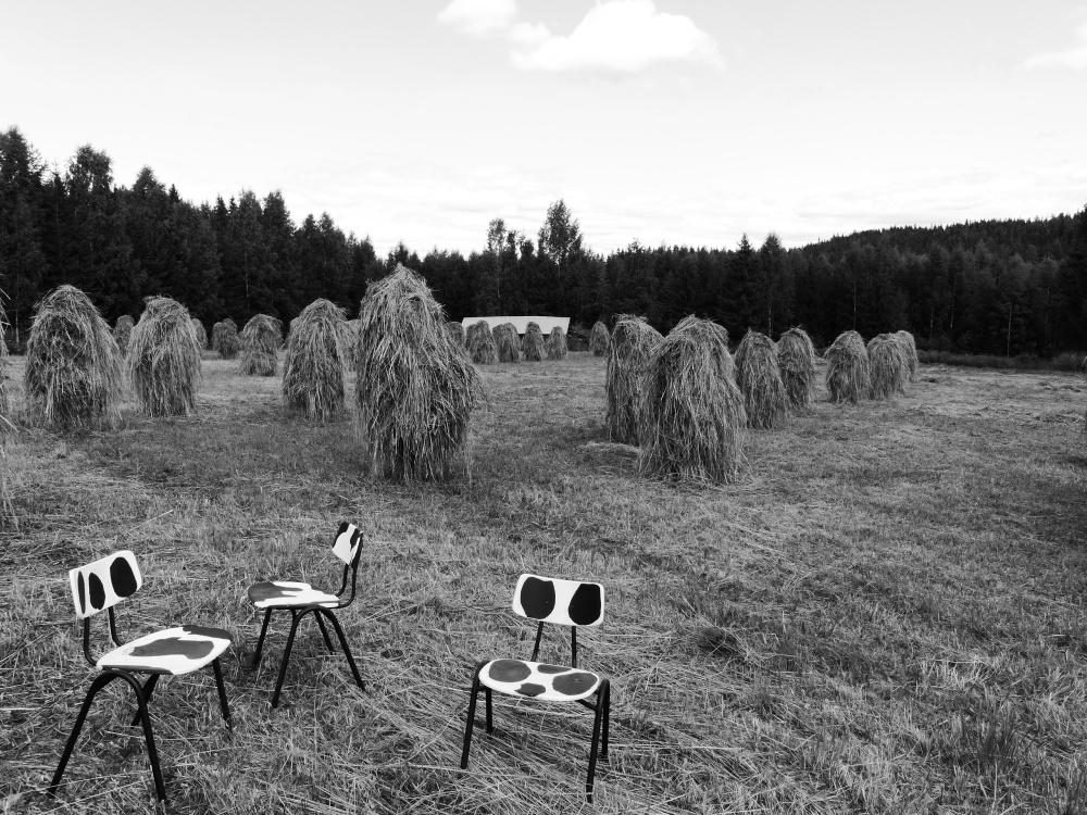 Lehmätuolit odottavat istujia.