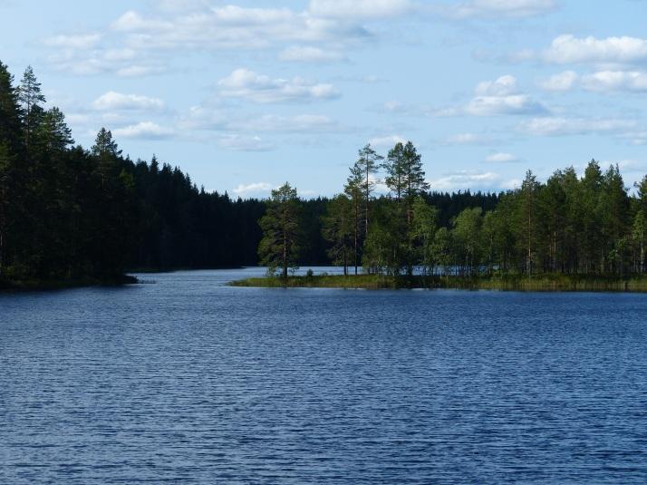 : Petkeljärven kansallispuisto sijaitsee lähellä Venäjän rajaa, parikymmentä kilometriä Ilomantsista itään.