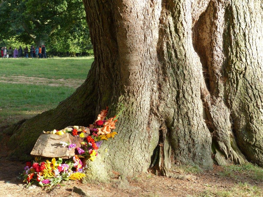 Kukkia, uhreja ja lahjoja puulle ja puun hengille.