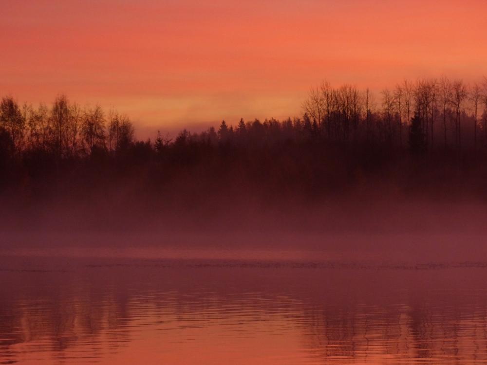 .Aurinko nousee usvaisen järven takaa