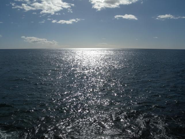 Merta Madeira 7 014