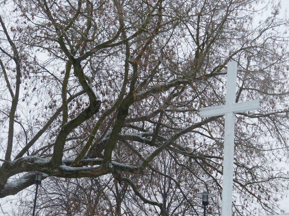 Pyhä puu ja risti