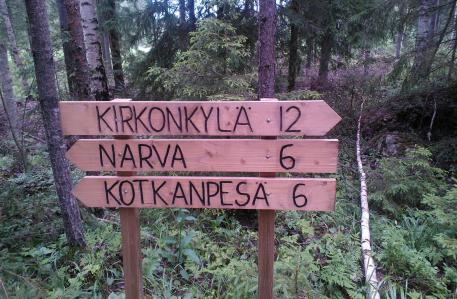 Narvan metsässä