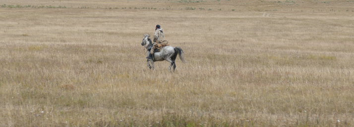 Yksinäinen ratsastaja