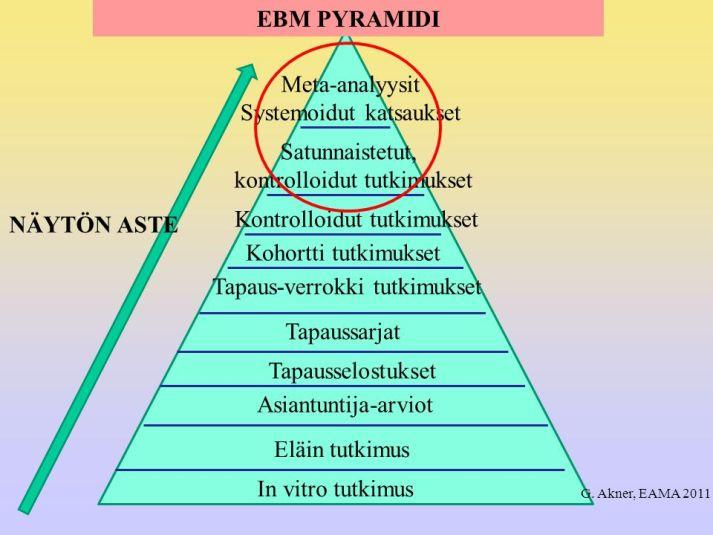 EBM pyramidi1